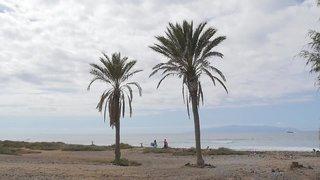 Hotel Hotel La Siesta Strand