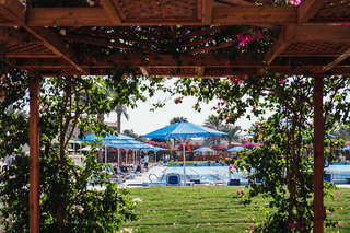 Hotel Desert Rose Resort Garten