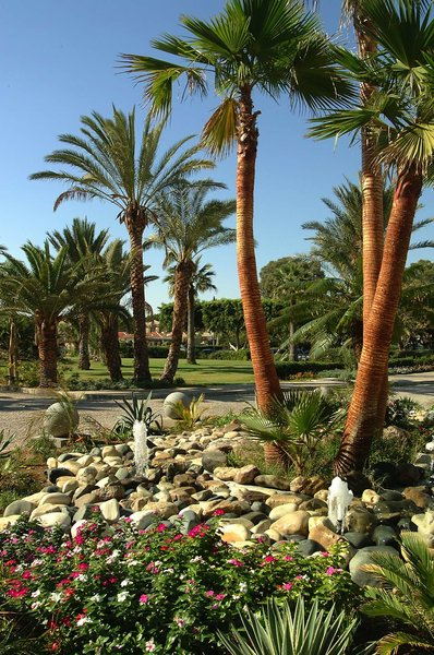 Palm Beach Hotel & Bungalows 7