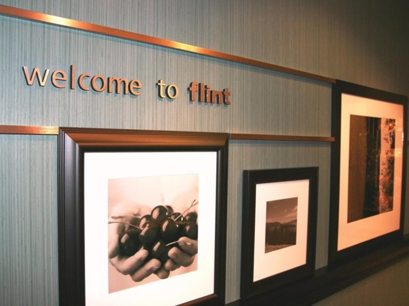 Hampton Inn & Suites Flint/Grand Blanc Lounge/Empfang