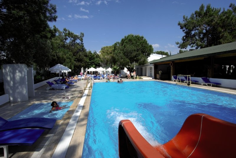 Maya Golf Pool