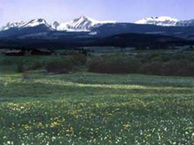 Best Western Plus Butte Plaza Inn Landschaft