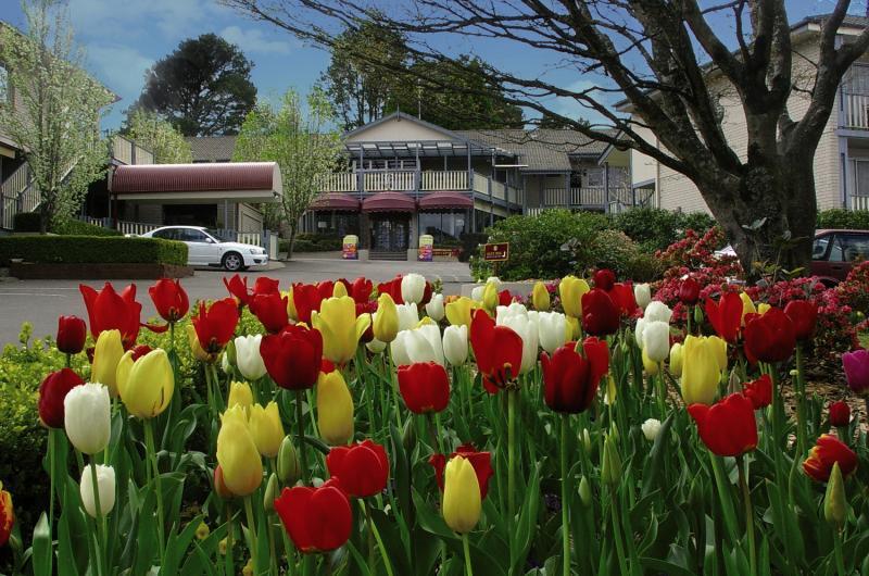 Waldorf Leura Gardens Resort Garten